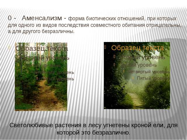 0 -Аменсализм - форма биотических отношений, при которых для одного из видов...