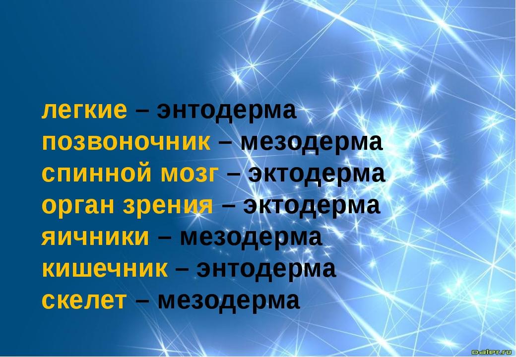 легкие – энтодерма позвоночник – мезодерма спинной мозг – эктодерма орган зре...