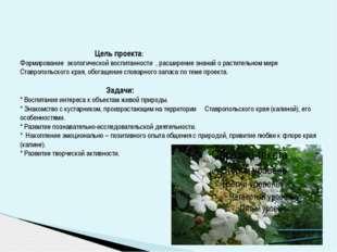 Цель проекта: Формирование экологической воспитанности , расширение знани
