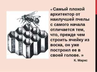 « Самый плохой архитектор от наилучшей пчелы с самого начала отличается тем,