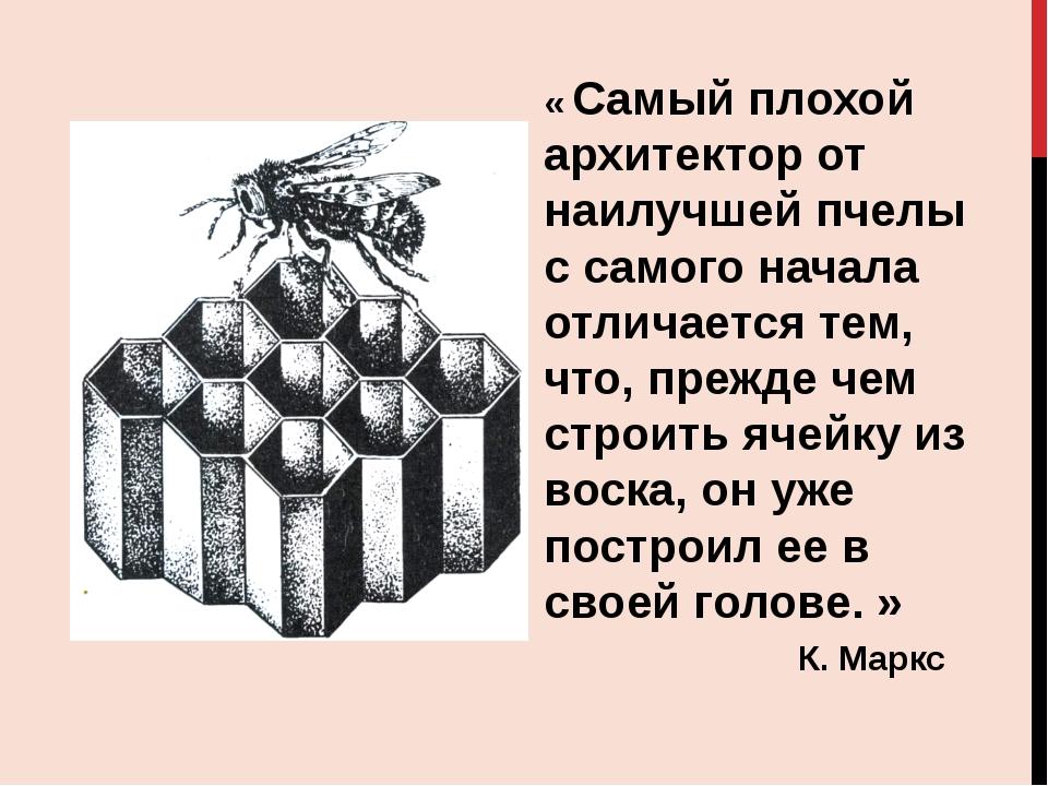 « Самый плохой архитектор от наилучшей пчелы с самого начала отличается тем,...