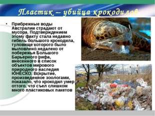 Пластик – убийца крокодилов Прибрежные воды Австралии страдают от мусора. Под
