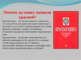 Почему же книгу назвали красной? Красный цвет – это сигнал тревоги и опасност