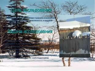 Цель исследования Наблюдение за посетителями кормушки и выявление условий, вл
