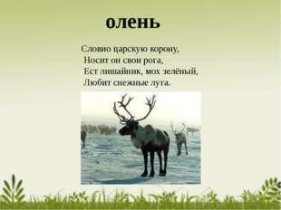 Словно царскую корону, Носит он свои рога, Ест лишайник, мох зелёный, Любит с