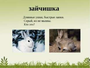 Длинные ушки, быстрые лапки. Серый, но не мышка. Кто это? зайчишка