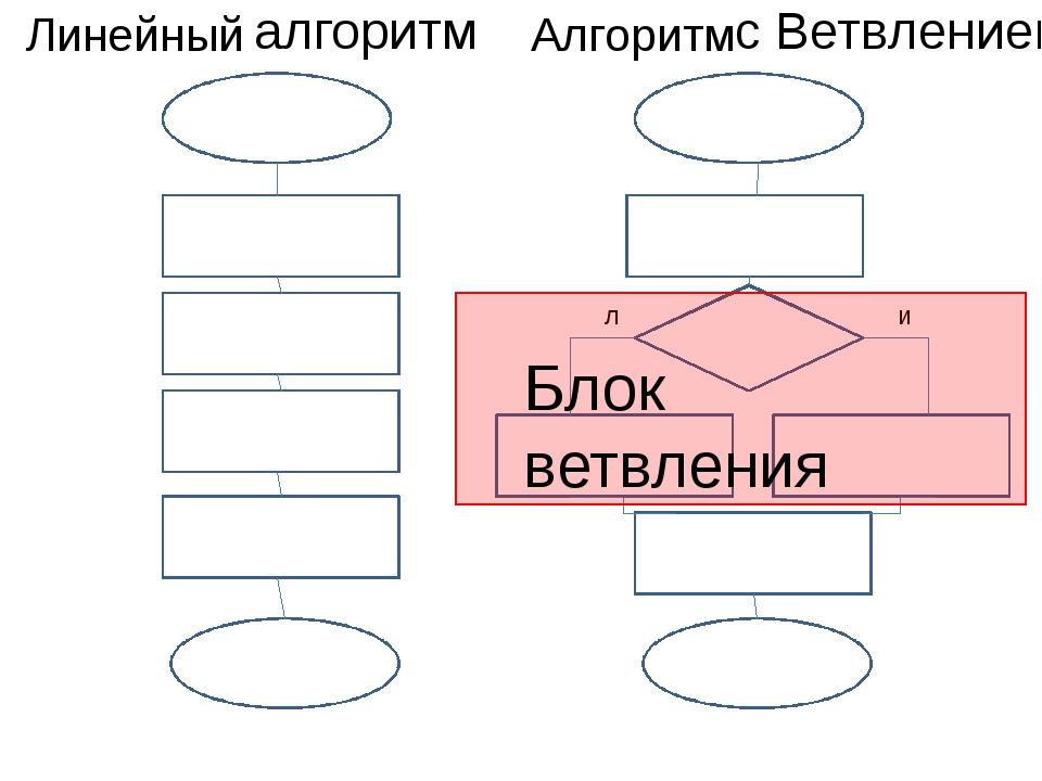 Линейный с Ветвлением л и Блок ветвления алгоритм Алгоритм