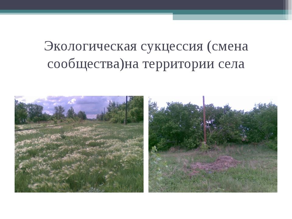Экологическая сукцессия (смена сообщества)на территории села