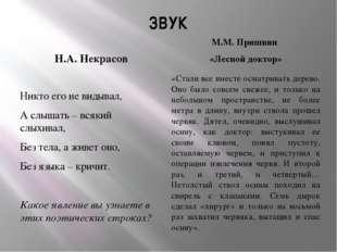 ЗВУК Н.А. Некрасов М.М. Пришвин «Лесной доктор» Никто его не видывал, А слыша