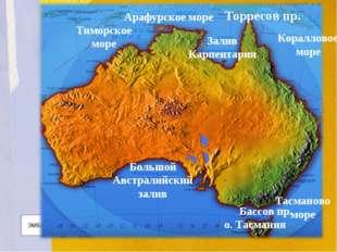 Арафурское море Тиморское море Залив Карпентария Коралловое море Большой Авст