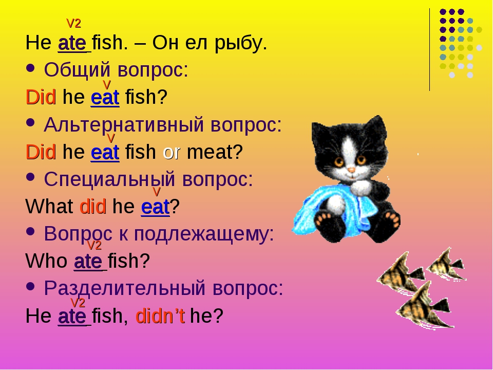 He ate fish. – Он ел рыбу. Общий вопрос: Did he eat fish? Альтернативный вопр...