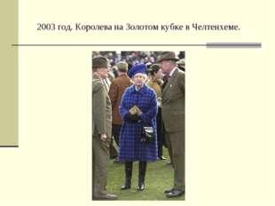 2003 год. Королева на Золотом кубке в Челтенхеме.