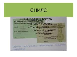 Взаимоотношения в системе обязательного пенсионного страхования