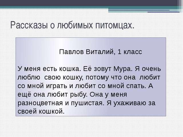 Рассказы о любимых питомцах. Павлов Виталий, 1 класс У меня есть кошка. Её зо...