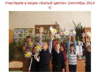 Участвуем в акции «Белый цветок» (сентябрь 2014 г)