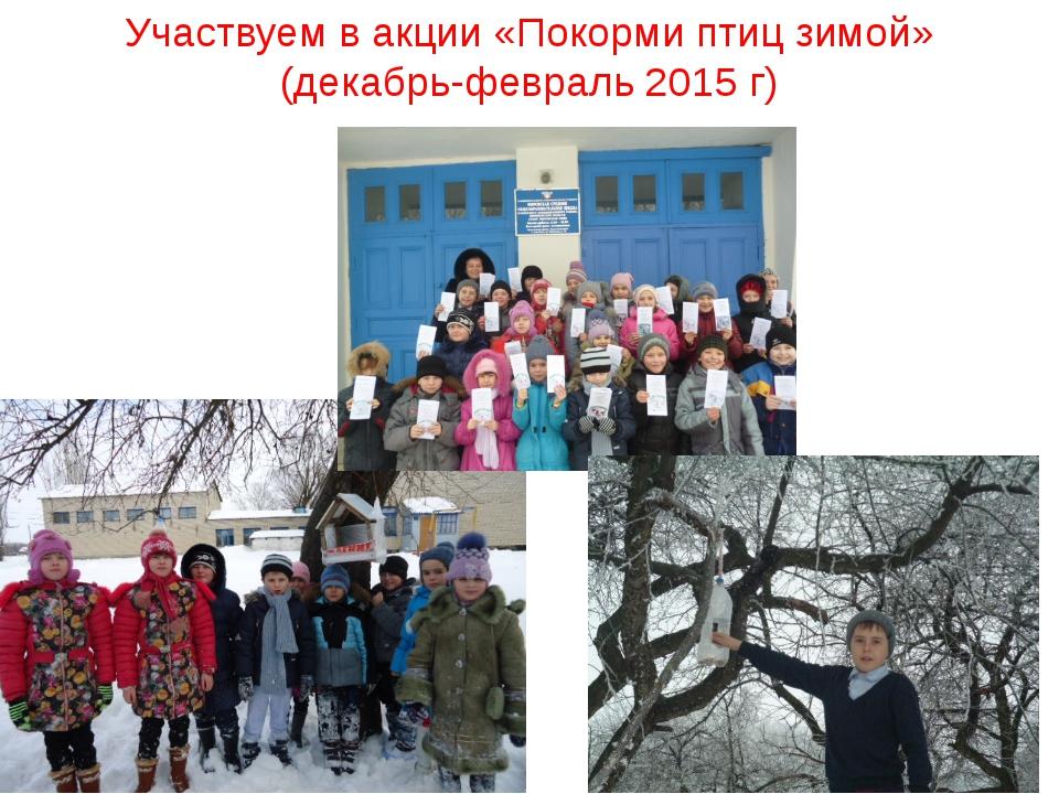 Участвуем в акции «Покорми птиц зимой» (декабрь-февраль 2015 г)