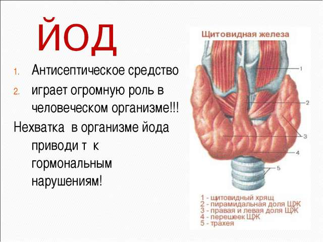 Антисептическое средство играет огромную роль в человеческом организме!!! Нех...