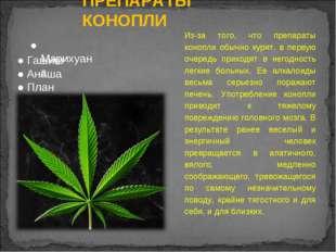 ПРЕПАРАТЫ КОНОПЛИ Из-за того, что препараты конопли обычно курят, в первую оч