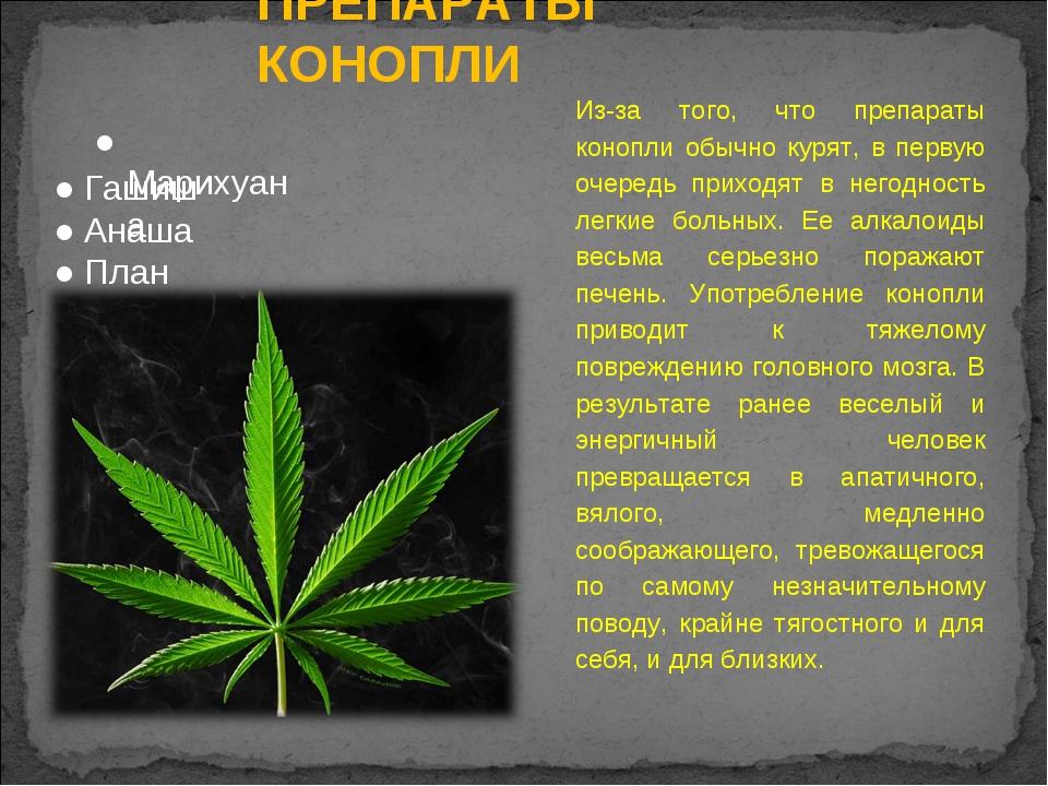 ПРЕПАРАТЫ КОНОПЛИ Из-за того, что препараты конопли обычно курят, в первую оч...