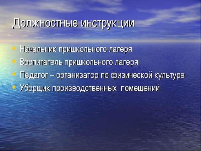 Должностные инструкции Начальник пришкольного лагеря Воспитатель пришкольного...