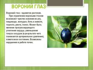 ВОРОНИЙ ГЛАЗ Вороний глаз - ядовитое растение.  При отравлении вороньим г