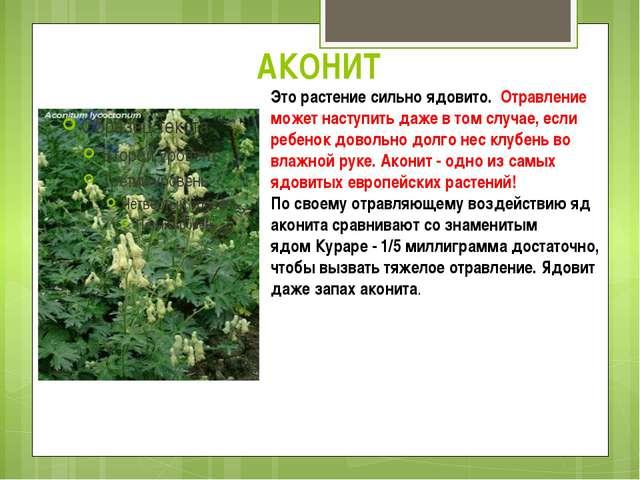 АКОНИТ Это растение сильно ядовито. Отравление может наступить даже в том слу...