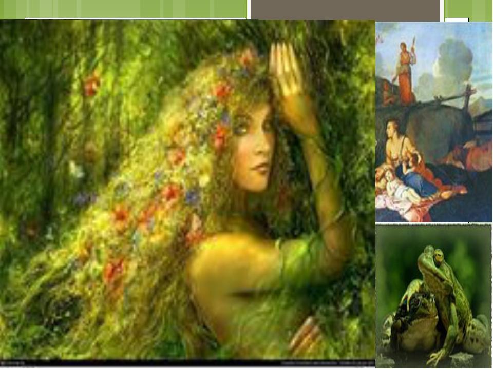 ЛЕГЕНДЫ, МИФЫ Лютик растет там, где живут лягушки. Богиня Лето (мать Артемиды...