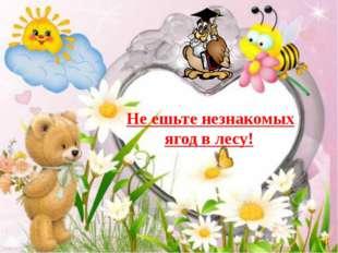 Авторы: Захарова Светлана Павловна, учитель начальных классов МАОУ СОШ № 27 г