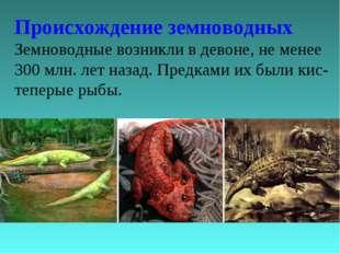 Происхождение земноводных Земноводные возникли в девоне, не менее 300 млн. ле