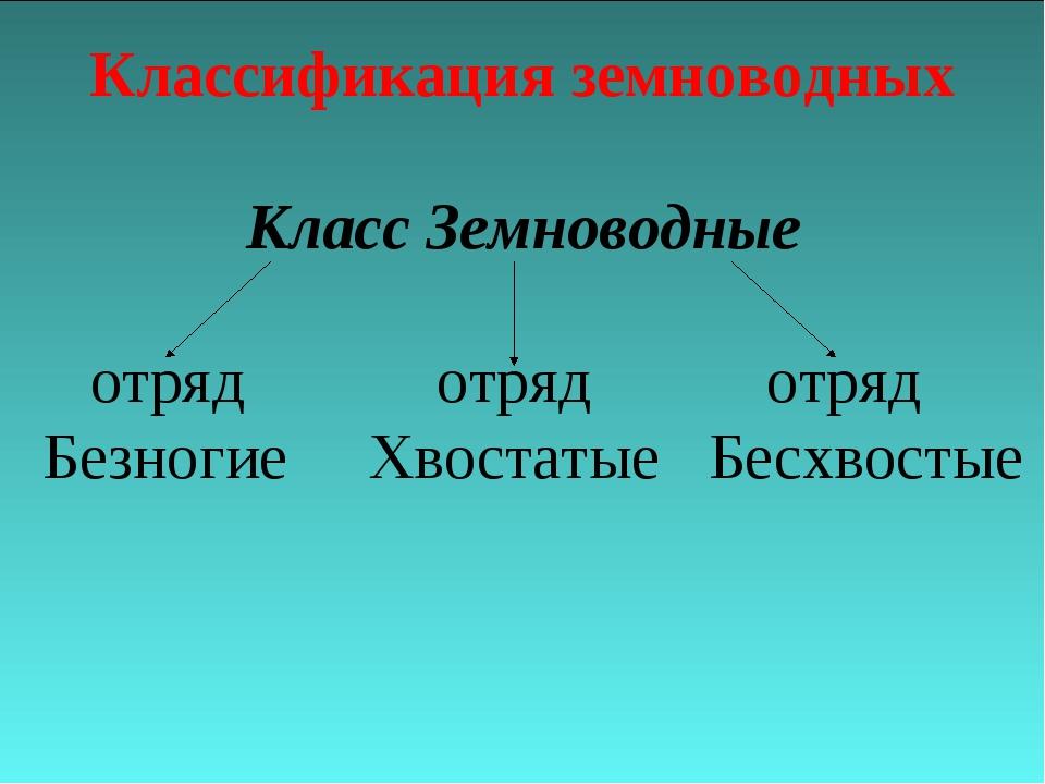 Классификация земноводных Класс Земноводные отряд отряд отряд Безногие Хвоста...