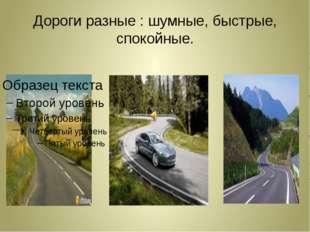 Дороги разные : шумные, быстрые, спокойные.
