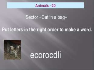 Sector «Cat in a bag» Put letters in the right order to make a word. Animals