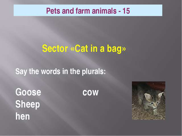 Sector «Cat in a bag» Say the words in the plurals: Goose cow Sheep hen Pets...