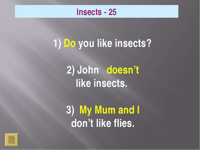 Insects - 25 1) Do you like insects? 2) John doesn't like insects. 3) My Mum...