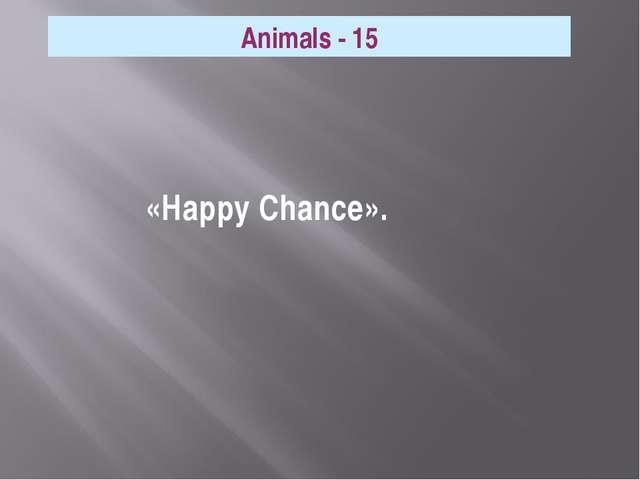 «Happy Chance». Animals - 15