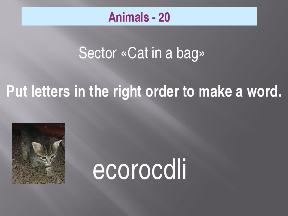 Sector «Cat in a bag» Put letters in the right order to make a word. Animals...