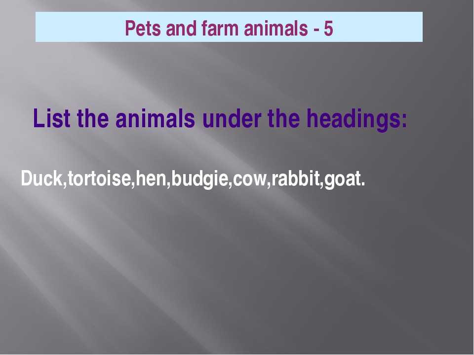 List the animals under the headings: Duck,tortoise,hen,budgie,cow,rabbit,goa...