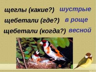 щеглы (какие?) щебетали (где?) щебетали (когда?) шустрые в роще весной