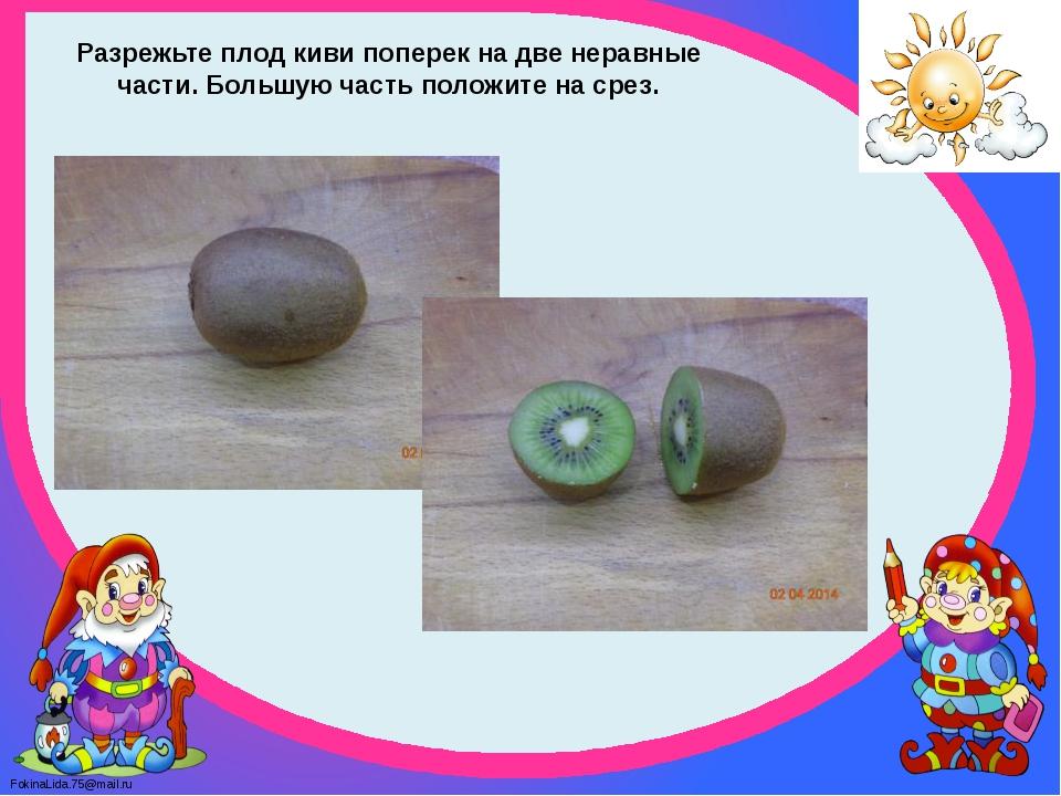Разрежьте плод киви поперек на две неравные части. Большую часть положите на...