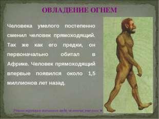 © Жадаев Д.Н., 2005 ОВЛАДЕНИЕ ОГНЕМ Человека умелого постепенно сменил челове