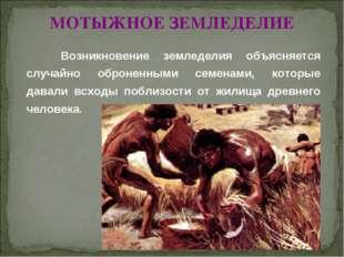 © Жадаев Д.Н., 2005 МОТЫЖНОЕ ЗЕМЛЕДЕЛИЕ Возникновение земледелия объясняется