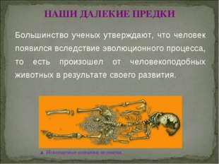 © Жадаев Д.Н., 2005 НАШИ ДАЛЕКИЕ ПРЕДКИ Большинство ученых утверждают, что че