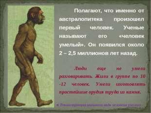 © Жадаев Д.Н., 2005 Полагают, что именно от австралопитека произошел первый