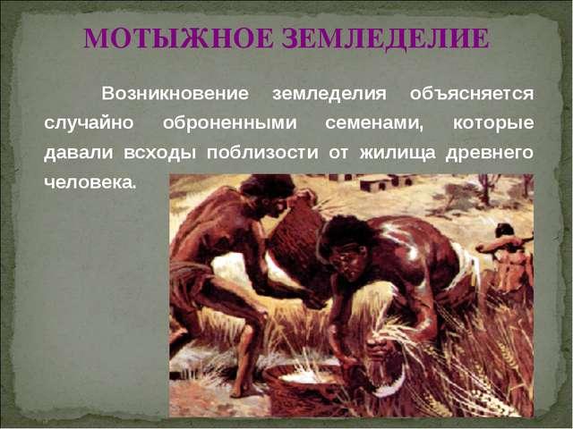 © Жадаев Д.Н., 2005 МОТЫЖНОЕ ЗЕМЛЕДЕЛИЕ Возникновение земледелия объясняется...