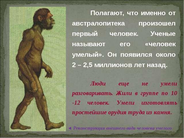 © Жадаев Д.Н., 2005 Полагают, что именно от австралопитека произошел первый...