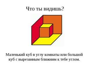 Что ты видишь? Маленький куб в углу комнаты или большой куб с вырезанным ближ