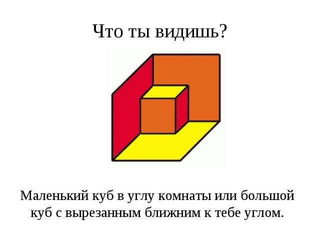 Что ты видишь? Маленький куб в углу комнаты или большой куб с вырезанным ближ...