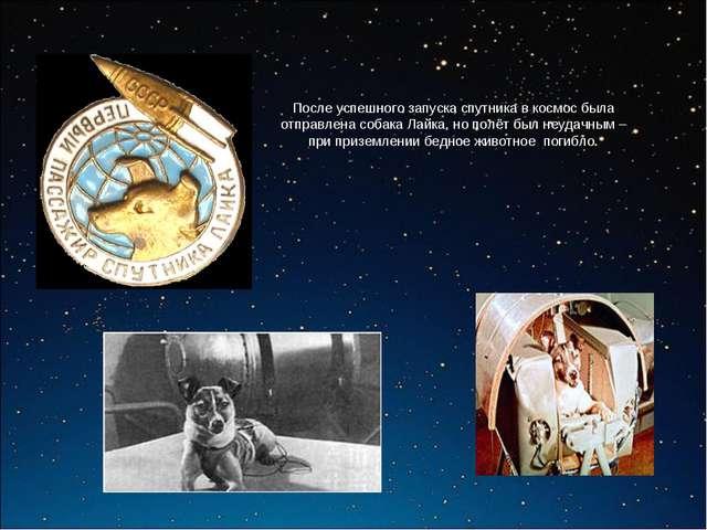 После успешного запуска спутника в космос была отправлена собака Лайка, но по...