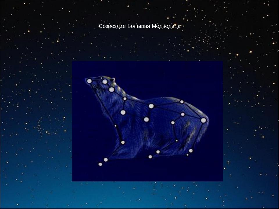 Созвездие Большая Медведица