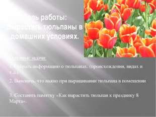 Цель работы: Вырастить тюльпаны в домашних условиях. Основные задачи: 1. Собр